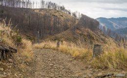 Na żółtym szlaku z Rycerki Górnej na Wielką Raczę