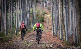 Podjazd zielonym szlakiem z Przełęczy Kotarz na Muńcuł