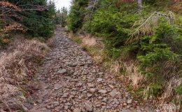 Czarny szlak ze Złatnej na Baranią Górę
