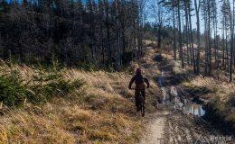 Na zielonym szlaku z Koszarawy na Mędralową