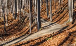 Zimna dziura  (Babia Góra Trails)