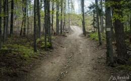 Początek podjazdu z Przełęczy Bukowskiej na Porębski Groń