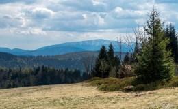 Widok z Potrójnej na południe (Babia Góra)
