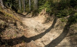 Czerwony szlak w okolicy Łamanej Skały