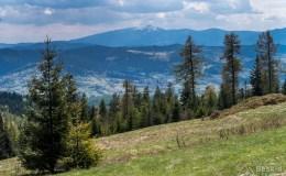 Polana na Gibasach - widok na południe (Pilsko)