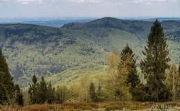 Widok z Kiczery na północ