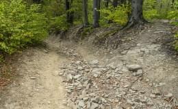 Żółty szlak z Kiczery do Czańca