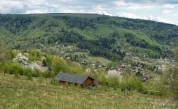 Dolina Kozubnika pod Żarem