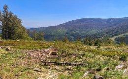 Na czerwonym szlaku pomiędzy Hyrcą na Przełęczą Salmopolską