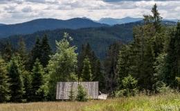 Widok z Hali Krawcula na południe (Mała Fatra)