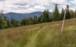 Początek niebieskiego szlaku z Hali Krawcula do Złatnej