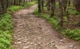 Górny odcinek niebieskiego szlaku z Romanki do Sopotni Małej