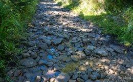 Czarny szlak z Kamesznicy na Baranią Górę