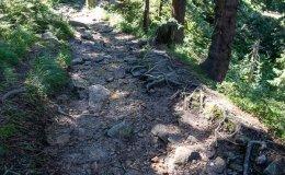 Niebieski szlak z Baraniej Góry do Wisły Czarne