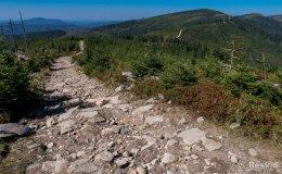 Zielony szlak z Gawlasiego na Magurkę Wiślańską
