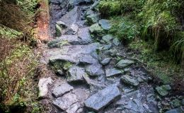 Czerwony szlak z Ostravicy na Smrek - odcinek powyżej  Barabskiej drogi (cesty) - Knížecí chodník