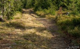 Na niebieskim szlaku granicznym Krawców Wierch - Trzy Kopce