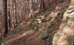 Niebieski szlak z Romanki na Słowiankę