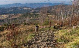 Niebieski szlak z Romanki na Słowiankę - widok na Beskid Śląski