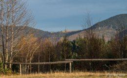Widok z Hali Boraczej na Przełęcz Pawlusią