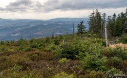 Czarny szlak ze Złatnej na Baranią Górę (widok na południe)