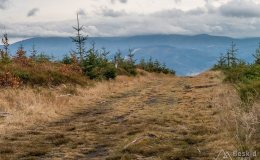 Czarny szlak ze Złatnej na Baranią Górę (widok na wschód - w chmurach Pasmo Lipowskiej)