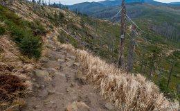 Czerwony szlak z Baraniej Góry w kierunku Magurki Wiślańskiej