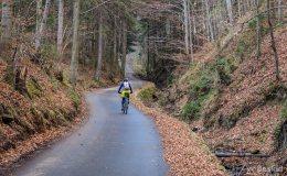 Zielony/rowerowy szlak z Węgierskiej Górki do Kamesznicy-Złatna
