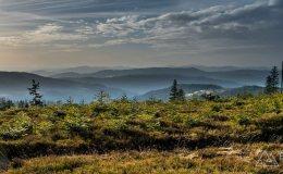 Zielony szlak pomiędzy Gawlasim na Magurką Wiślańską