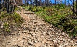 Początek szlaku z Przełęczy Salmopolskiej na Malinów