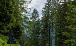 Dolomity_urlop_2020-08-27