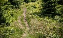 Niebieski szlak z Trzech Kopców na Krawców Wierch