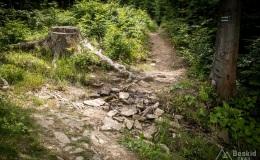 Niebieski szlak z Hali Krawcula do Złatnej