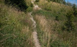 Czerwony szlak z Wielkiej Raczy na Kikulę