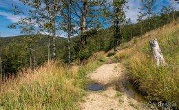 Zielony szlak z Małej Raczy do Starej Bystrzycy