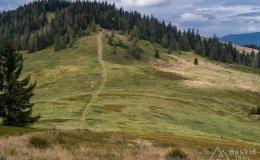 Przełęcz Halna i Mała Rycerzowa