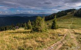 Przełęcz Halna
