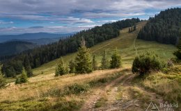 Przełęcz Halna i Hala Rycerzowa