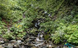 Szutrówka z Ostravicy do czerwonego szlaku na Smrek - wodospad Bučací  (na żywo większy - robi wrażenie!)