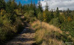 Na niebieskim szlaku na Halę Radziechowską