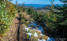 Żółty szlak tuż przed Malinowską Skałą