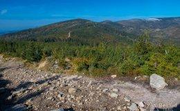 Na zielonym szlaku pod Magurką Wiślańską