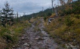 Na czarnym szlaku z Baraniej Góry do Kamesznicy
