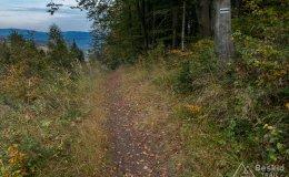 Zielony szlak z Kamesznicy-Złatna do Węgierskiej Górki