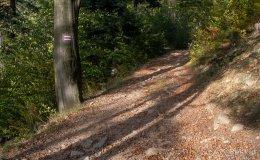 Czerwony szlak do Węgierskiej Górki