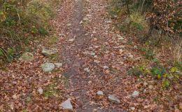 Na czerwonym szlaku z Węgierskiej Górki na Glinne