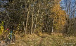 Na niebieskim szlaku z Hali Radziechowskiej do Radziechów
