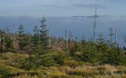 Okolice Glinnego - widok na Pasmo Lipowskiej (widać tylko grzbiet nad chmurami)