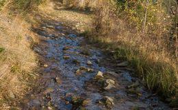 Czerwony szlak z Glinnego do Węgierskiej Górki