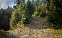 Początek terenowego podjazdu z Żabnicy-Skałka na Halę Boraczą
